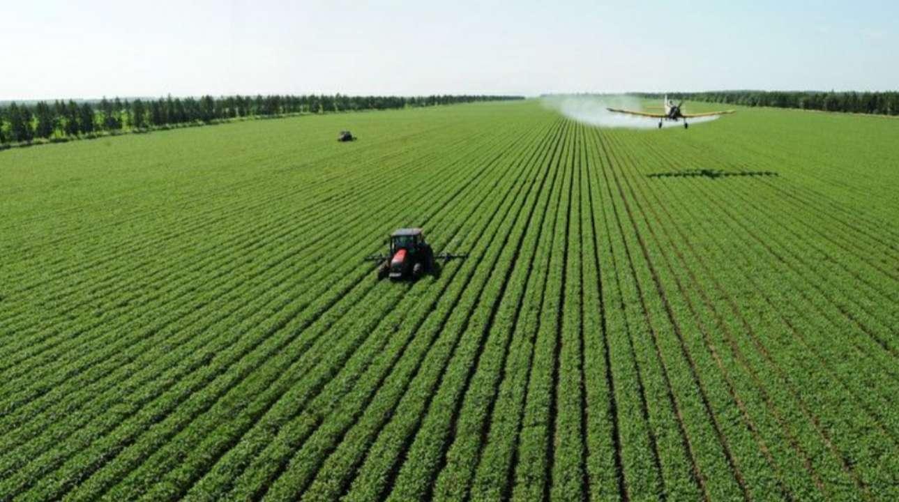山东省财政综合运用产业扶持政策 支持农业高质量发展