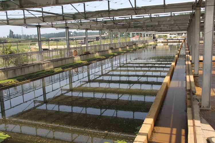 103秒|污水处理量近8万吨/天 淄博沂源县这个TOT项目不简单!