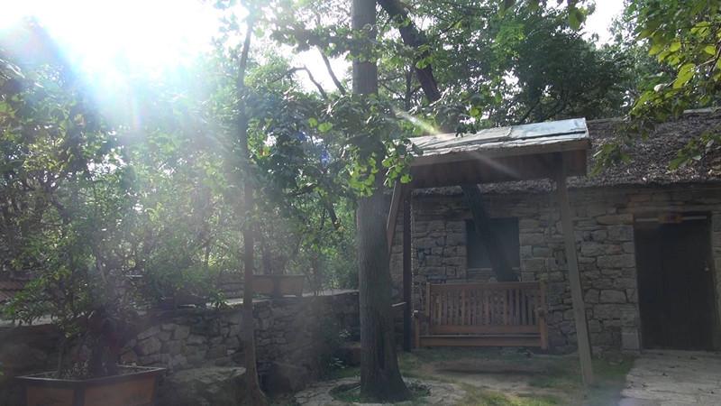 我们村不一样|兰陵压油沟村的一天:乡味乡音乡容,最是那门前的一颗樱桃树