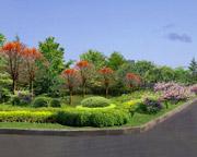 天蓝、地绿、水清已成济阳常态!新增绿化面积200多万平方米