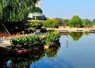 """滨州这10个社区入选市级""""四型就业社区"""""""