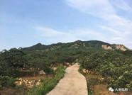 山东第二批美丽村居建设省级试点名单出炉,潍坊这7个村入选