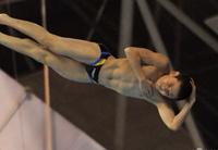 争夺奥运入场券!烟台2019年全国跳水锦标赛即将拉开战幕