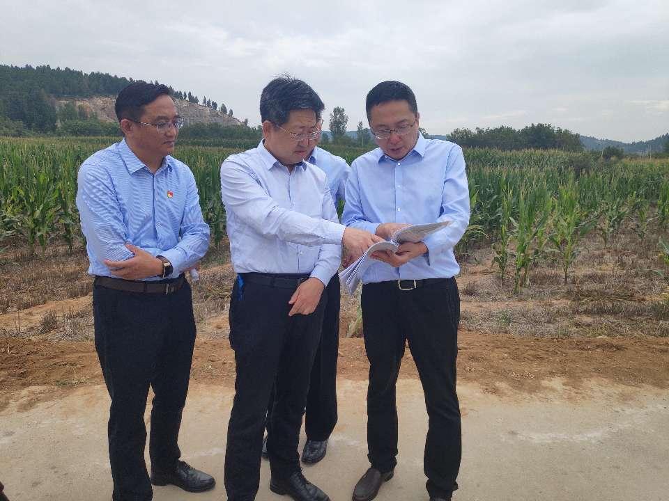问政追踪|枣庄到位7334万元农业生产发展资金 109万一级种猪场临时性生产救助金在9月19日下发到农户