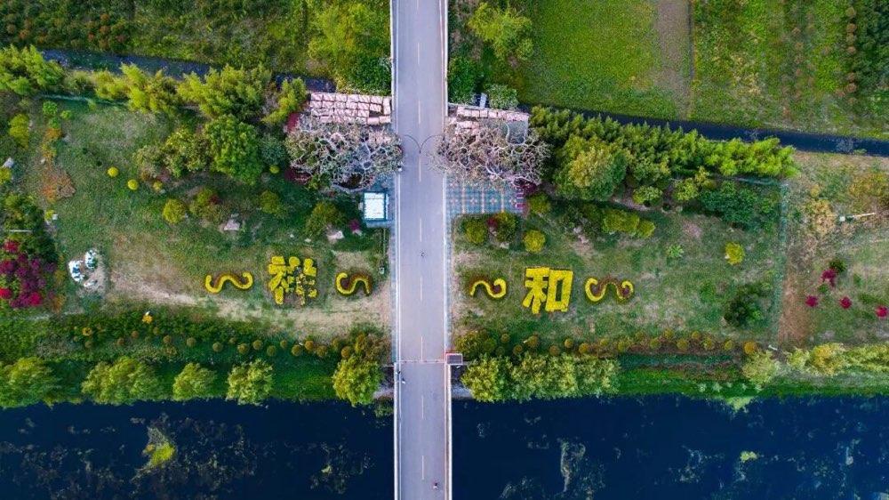 台儿庄古城祥和庄园将于9月28日举行千人花海徒步巡游活动