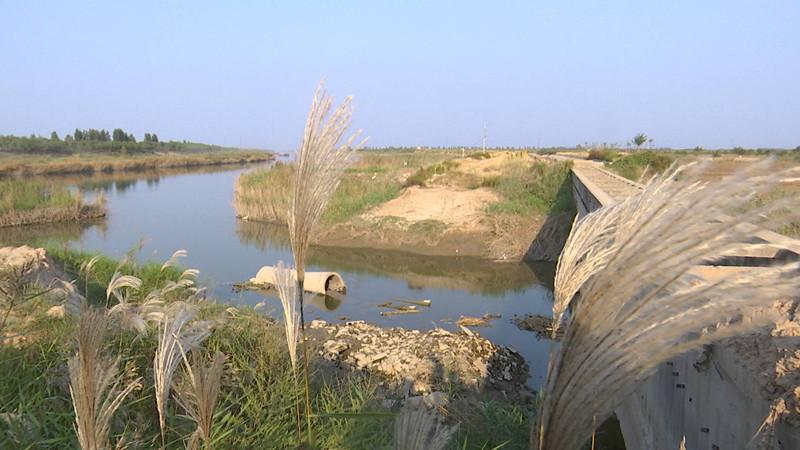 问政追踪丨抗洪标准将达到50年一遇 省委省政府将牵头全面治理小清河流域