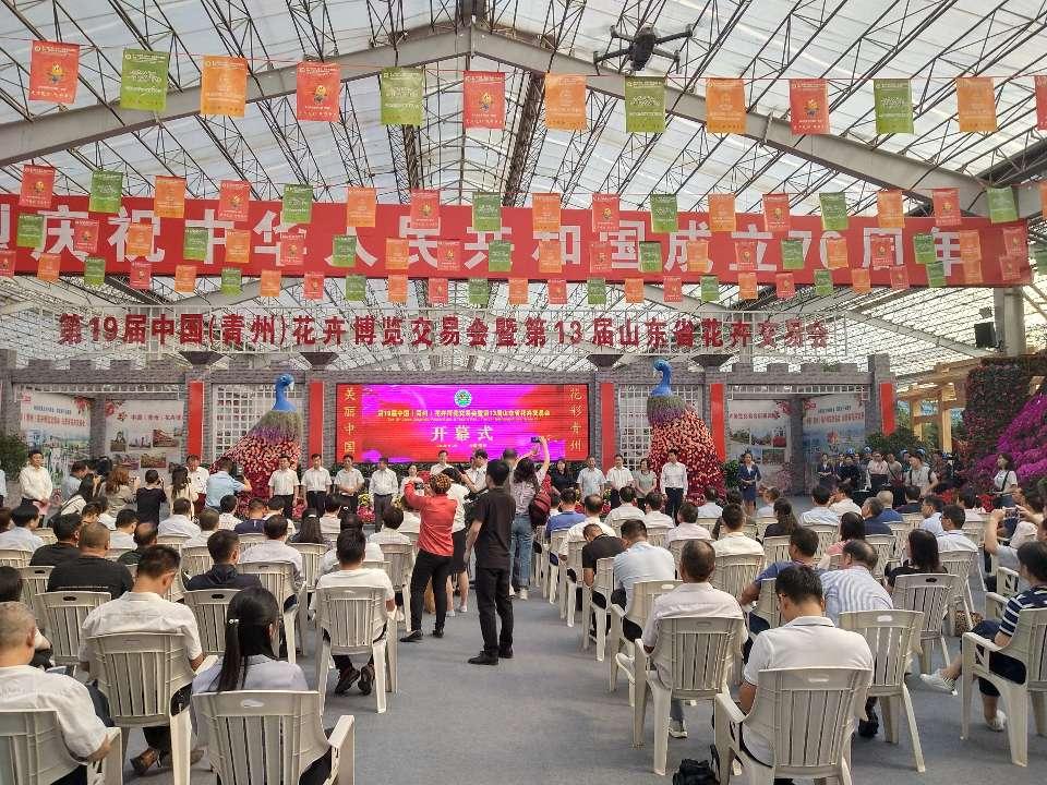 第19届中国(青州)花博会开幕 邀您畅游花的海洋