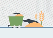 德州:从传统农业到智慧农业 产粮大市奔向农业强市