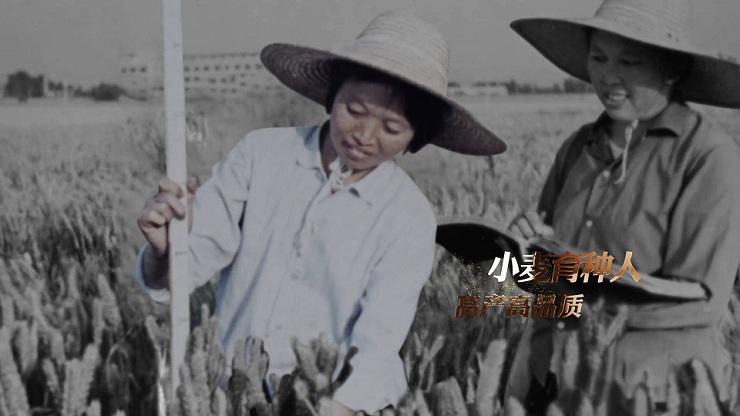 70年,一粒粒种子不断推陈出新!《主人翁 逐梦路》第三集山东卫视10月2日播出