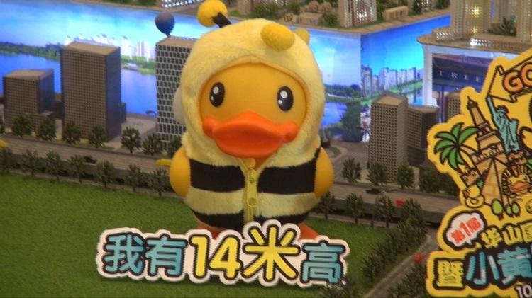 35秒|再也不用在抖音上看小黄鸭啦,济南这个地方也有!