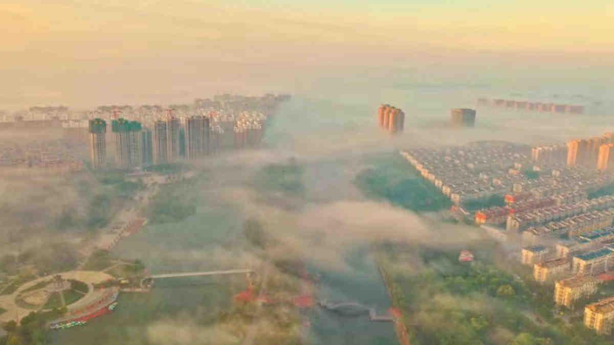 寒露节气,晨雾弥漫,犹如仙境!在单县一样看云海!