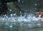 海丽气象吧丨今天夜间到10日上午邹平市有雨 明天最高温21°C