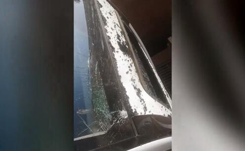 AI闪电丨求线索!济南一小区现高空坠猫,网友车顶被砸一个坑