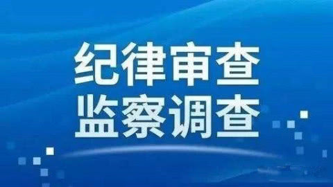 临沂艺术学校财务科原科长蔡利华接受纪律审查和监察调查