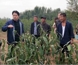 山东省自然资源厅开展科技下乡助力精准扶贫