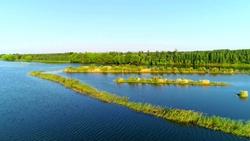 39秒|航拍秋后金堤河聊城阳谷段,牛羊成群、白鹭栖息
