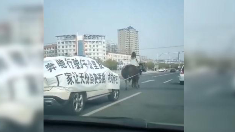 34秒丨奔驰行驶六千公里发动机报废,滨州街头一女子骑马维权