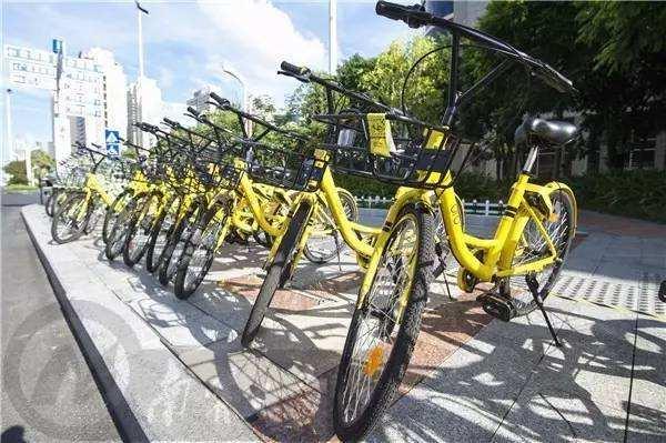 即日起淄博暂停共享单车企业在主城区投放备案