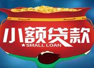 滨州两家小额贷款公司被取消经营资格