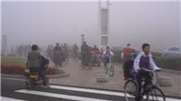 海丽气象吧丨东营市气象局发布大雾橙色预警信号!外出注意安全
