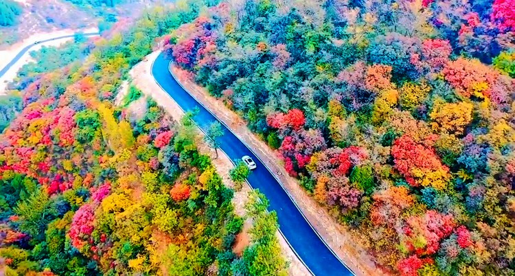 飞阅齐鲁 瞰万山红遍:走进淄博和尚房 瞰色彩斑斓如画村