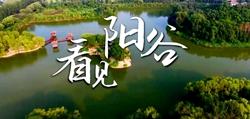 看历史,赏今朝!聊城阳谷重磅推出短视频《70秒,看见阳谷》