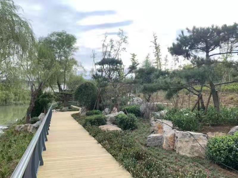 """济南小清河""""康体养生""""段开放啦!自然、生态的水岸景观等你打卡"""