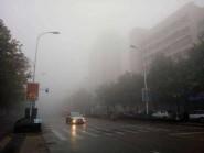 海丽气象吧丨大雾来袭!潍坊局部地区能见度低于500米