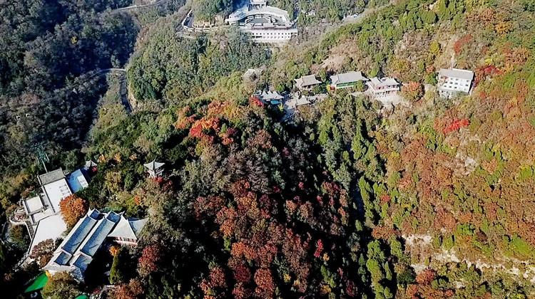 飞阅齐鲁 瞰万山红遍|凉凉的深秋里 瞰雄伟泰山的暖色一面