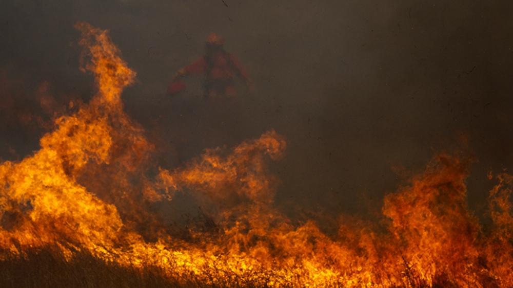 遇到森林火灾怎么办?这些逃生知识你要知道!