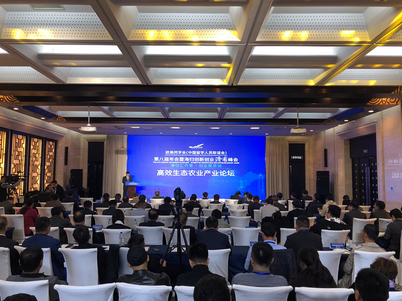 海归创新创业济南峰会主题论坛举行 创新和智慧的碰撞