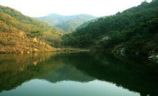 山东调整8处省级自然保护区范围和功能区,涉青岛枣庄泰安等