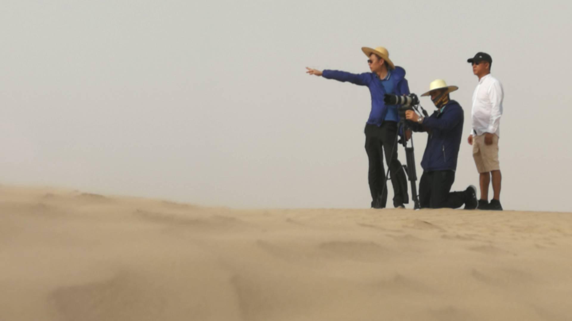 """冒60度高温在沙漠中采访海水稻种植 山东台记者这样打造""""硬核内容"""""""