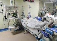 被蚊虫叮咬患上乙脑进了重症监护室 巨额治疗费愁坏病人家属