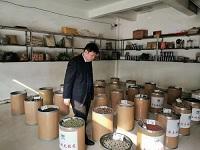 问政追踪|中药材市场违规售卖中药饮片,鄄城县组成近百人联合调查组排查整改