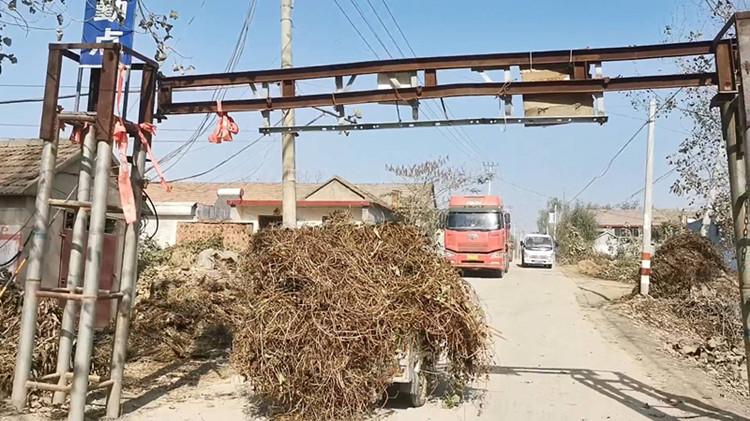土方车横行临沂村庄两个月,限高杆却只限外地车,镇政府:即将介入处理