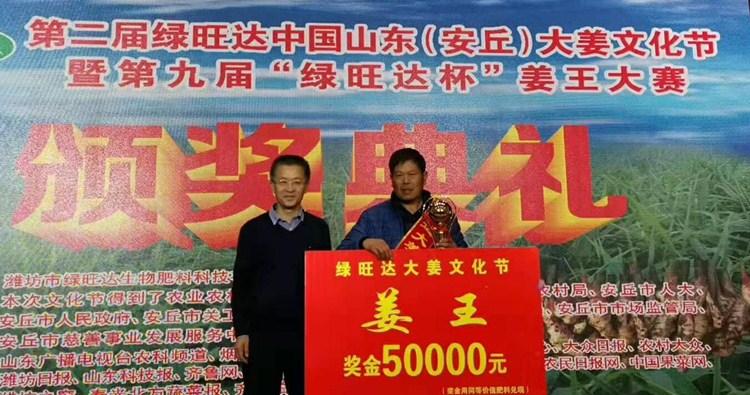 """潍坊安丘举办第二届大姜文化节 亩产28092.5斤""""姜王""""再创纪录"""