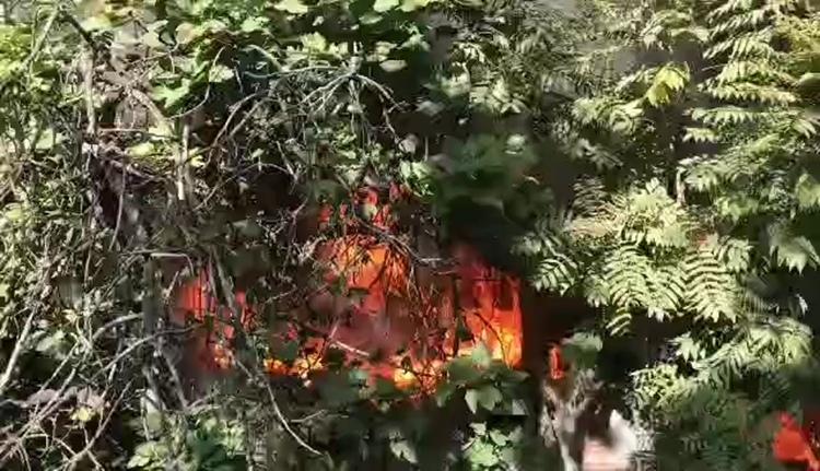 70秒 济南花园路两住户着火 现场火势猛烈黑烟不断从门窗喷出