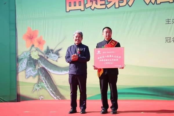 济南:黄瓜产业帮力乡村振兴 济阳区举办第八届曲堤黄瓜文化节