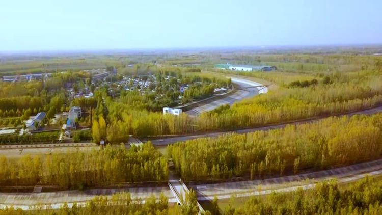 黄河东入海丨洒金铺翠 瞰黄河位山引黄闸静美景色