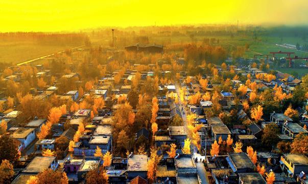 醉美初冬 | 初冬的薛城美出天际,来这些地方感受最后一抹金色