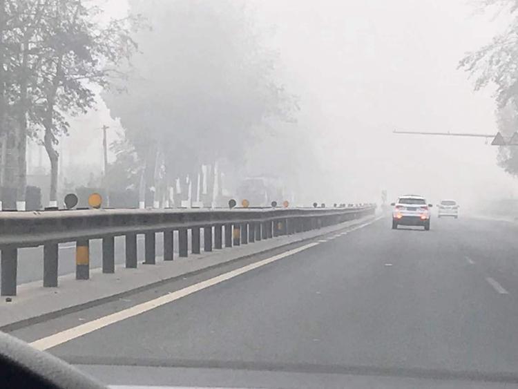 最新消息!因大雾侵袭 山东近百个高速收费站被迫临时关闭