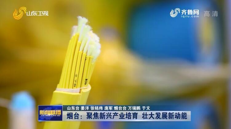 【冲刺四季度·企业最前线】道恩股份:坚持自主创新 解决高分子材料短缺难题