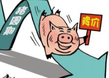 闪电指数|山东多地猪肉降价!青岛跌破30元/斤,潍坊最高降幅达11元/斤