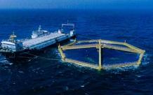 """这就是山东 抗得住台风,防得了鲨鱼!揭秘世界最大深海渔场""""深蓝1号"""""""