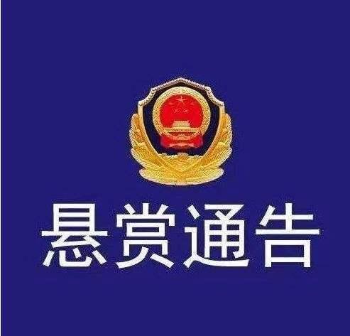 最高奖10万!济宁任城警方公开征集杨宝华为首涉黑恶犯罪团伙犯罪线索