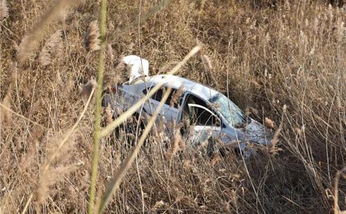 着急送孩子上学 滨州车主开快车 撞断反光柱冲进了芦苇沟中
