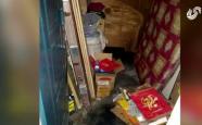 济南荣宝御园地下室被淹,业主贵浸物品受损却只可获得三千元赔偿