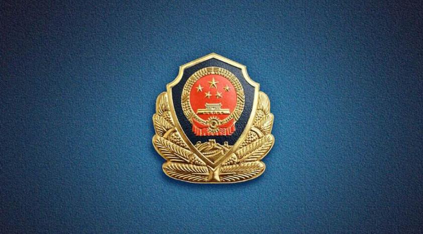 辗转全国40多个省市地区 青岛公安抓获538名逃犯