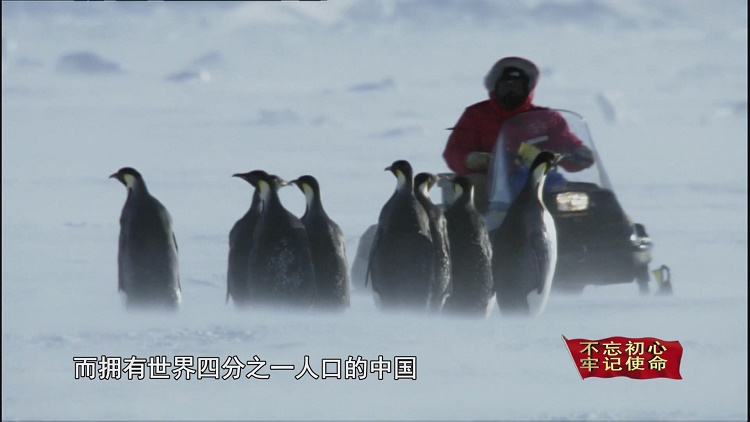 """代表祖国永远驻扎南极,这座""""长城""""下月35岁了!"""
